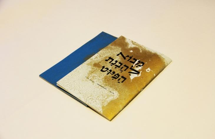 רותם כהן סואיה